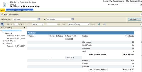 Figura 1.5 – relatório interativo