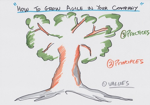 Como cultivar o Ágil na sua empresa: 1- Valores 2- Princípios 3- Práticas