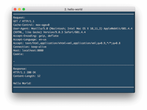 hello-world-showing-log-on-console
