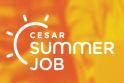 Centro de inovação abre inscrições para programa Summer Job