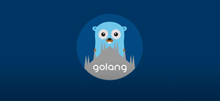 Como descobrir o ip do cliente e do servidor usando Golang