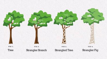 Strangler Pattern: como migrar um monólito para microsserviços